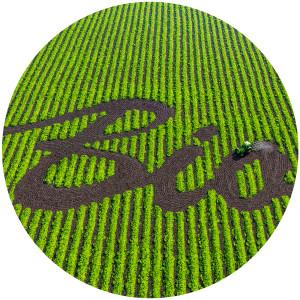 Anbau von Biolebensmitteln